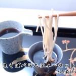 【ギフト可】生そばバラエティーセット(6人前)